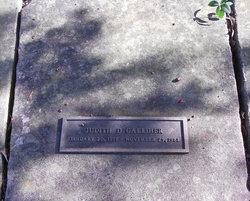 Judith D Galliher