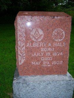 Albert A Hale