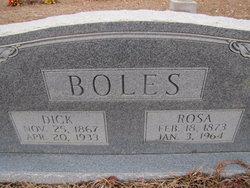 Rosa <i>Brittain</i> Boles