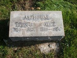 Alice Althouse