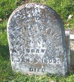 Martha Ann <i>Rogers</i> Heath