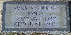 Amos Frederick Banks