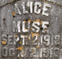 Alice Muse
