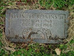 Alvin Lee Blevins