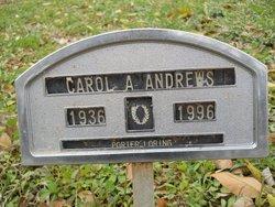 Carol Ann <i>Stuart</i> Andrews