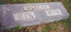 Georgie Goldie <i>Hurt</i> Mercer