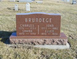 Ellen <i>Vaux</i> Brundege