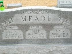Mary Ella Meade