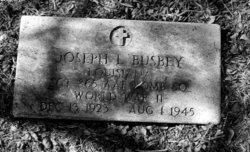Joseph L. Busbey