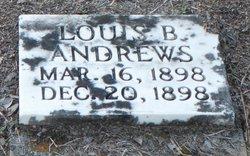 Louis B Andrews