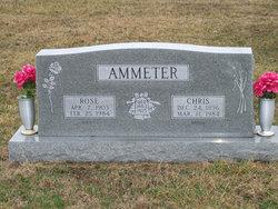 Christian Ammeter