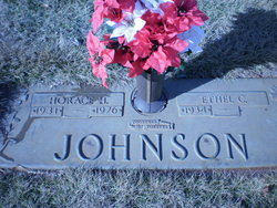 Horace Herbert Johnson