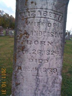 Elizabeth <i>Haskett</i> Anderson