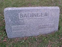 Sophia Katherine <i>Uebele</i> Badinger