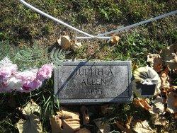 Judith A. Allen
