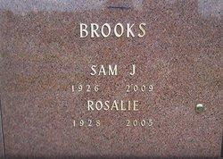 Samuel J. Brooks