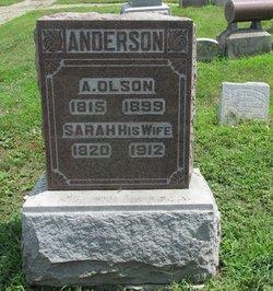 Andrew Olson Anderson
