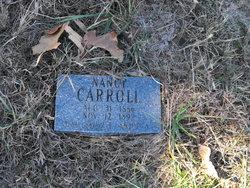 Nancy J Carroll