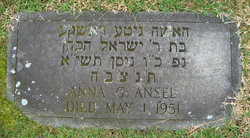 Anna G <i>Cohen</i> Ansel