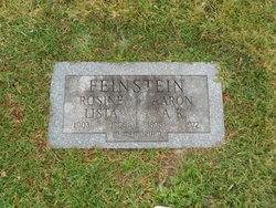 Aaron A.K. Feinstein