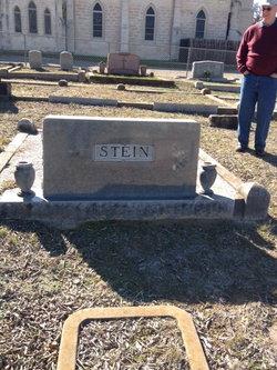 Walter Peter Stein