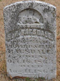 H. H. Bagsdale