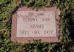 Teddye Adams