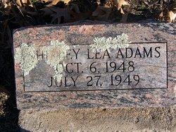 Shirley Lea Adams