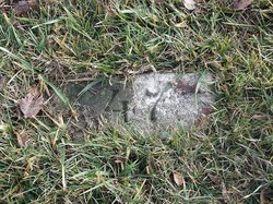 Peoria County Farm Cemetery