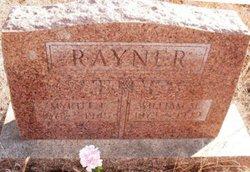 William Moses Rayner