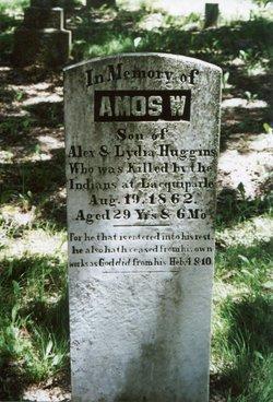 Amos W Huggins