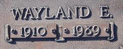 Wayland E. Sapp