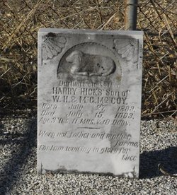 Harry Hicks McCoy