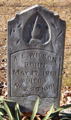 Andrew Lewis Wilson