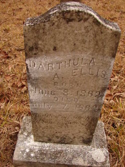 Darthula A. Ellis
