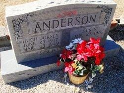 Hugh Dorsey Anderson