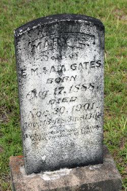Mary E Gates