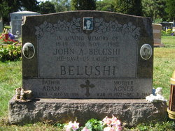 Agnes Belushi