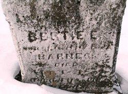 Bertie E Barnes