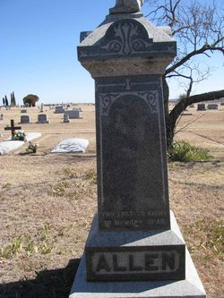 Henrietta Emmaline <i>Rice</i> Allen