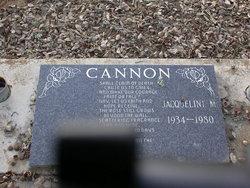 Jacqueline M Cannon