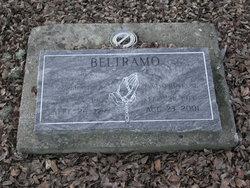 Armand A Beltramo