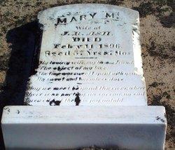 Mary Matilda <i>Chavis</i> Ashe
