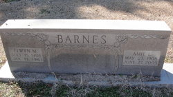 Elwyn M. Barnes