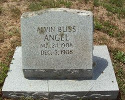Alvin Bliss Angel