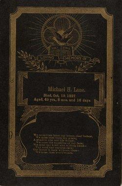 Michael H Lane