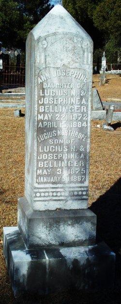 Ann Josephine Bellinger