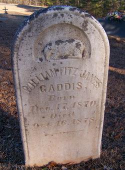 William Fritz James Gaddis