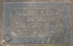 Herbert Hadley Bell, Jr