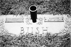Manlius Bush